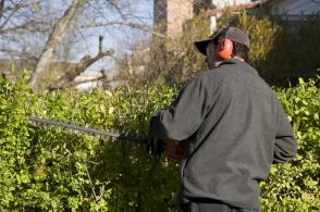 Hecken schneiden mit der KaBaut Garten & Landschaftspflege
